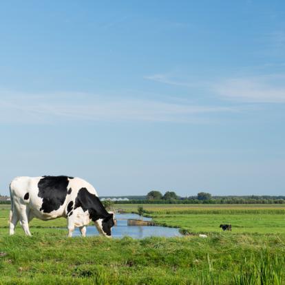 Waterschap Vallei en Veluwe voorbereiden op de Omgevingswet