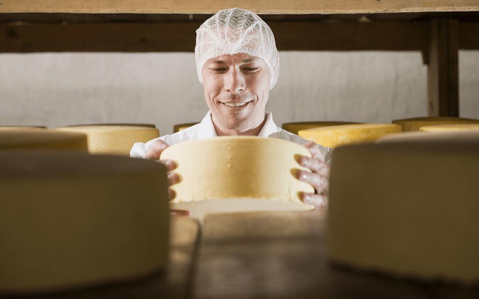 case goudse kaas food bewerkt