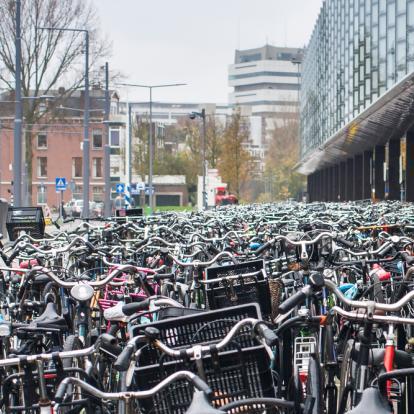 P2 verantwoordelijk voor programmamanagement Fietsparkeren Rotterdam