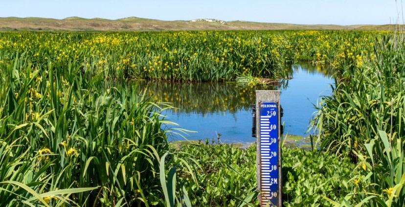 Samen de boer op voor duurzaam zoetwatergebruik Texelse landbouw