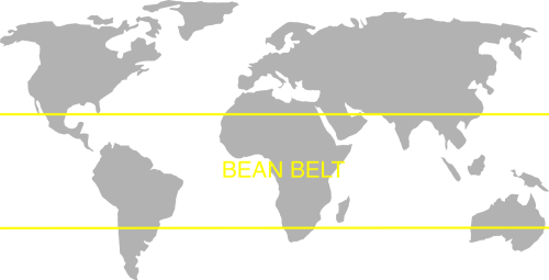 Coffee belt image