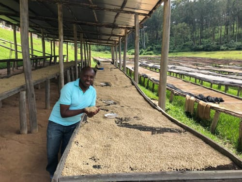 Sam from Bufcoffee holding dried beans