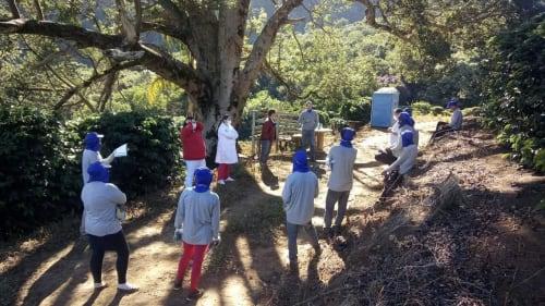 Best practice coronavirus training on a farm in Brazil
