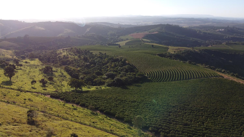 A view of Fazenda Zaroca