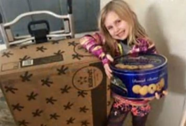 Child orders dollhouse, cookies using Alexa