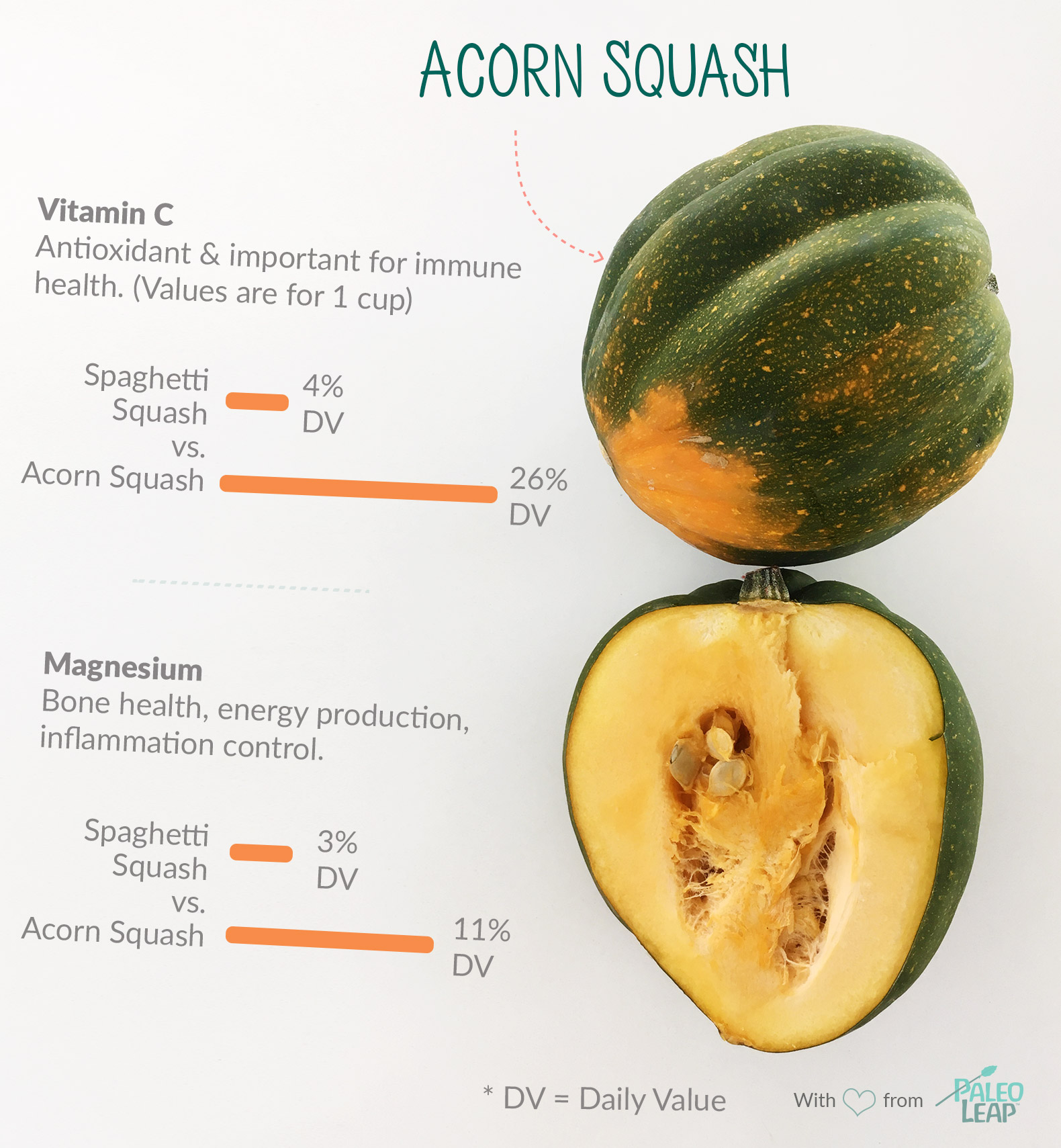 Acorn Squash highlights