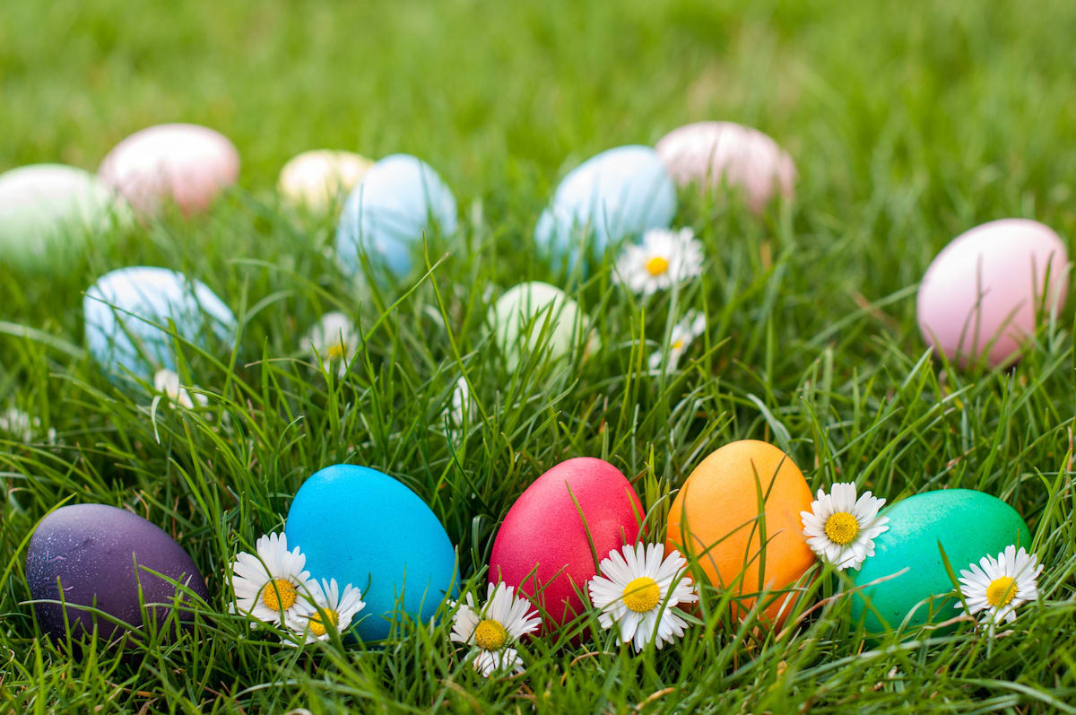featured image for story, Hopping into Springs! FREE Egg Hunt!