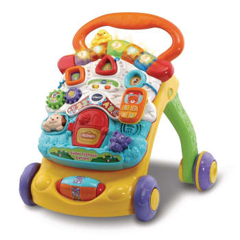 VTech® Stroll & Discover Activity Walker™ - French Version