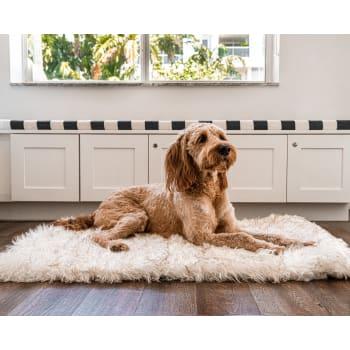 Paw Canada PupRug™ Portable Orthopedic Dog Bed - White - Large/Extra Large