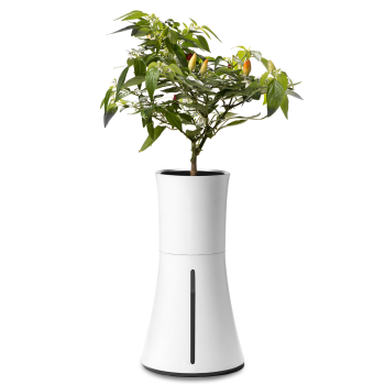 Botanium Self-Watering Hydroponic Smart Planter – White Smoke