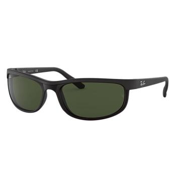 Ray-Ban Predator 2 Sunglasses - Black/Green Classic G-15