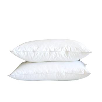 Cuddle Down Suprelle Memo Pillows - King - Set of 2