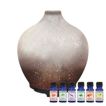 T-Zone™ Health Glass Art Diffuser with 6 Essential Oils - Metallic