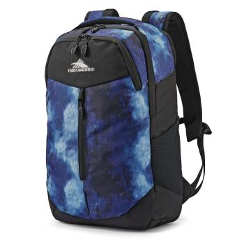High Sierra Swerve Pro Backpack - Space