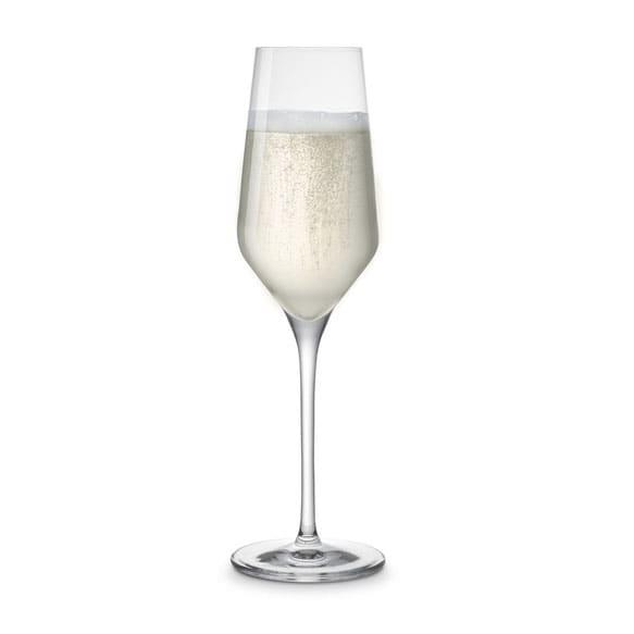 Vivo Champagne Glass - Set of 4