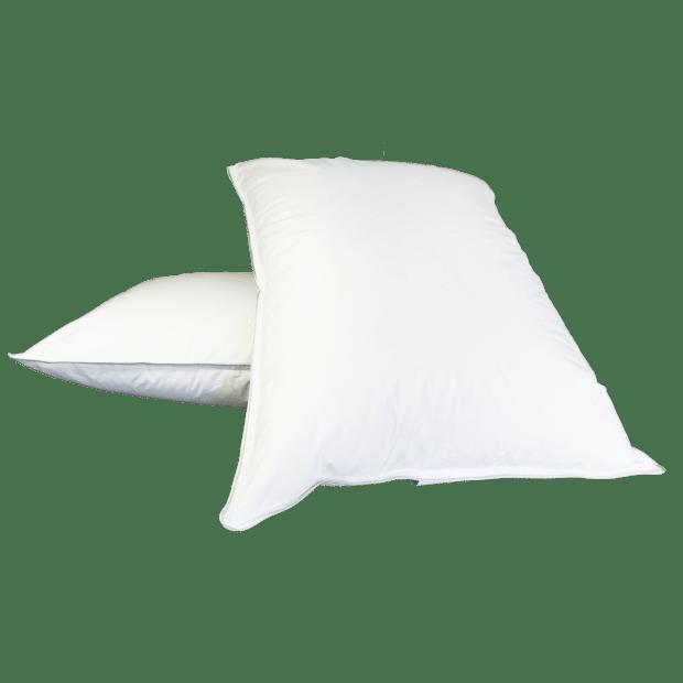 Twin Ducks White Goose Down Pillow - Queen - Set of 2