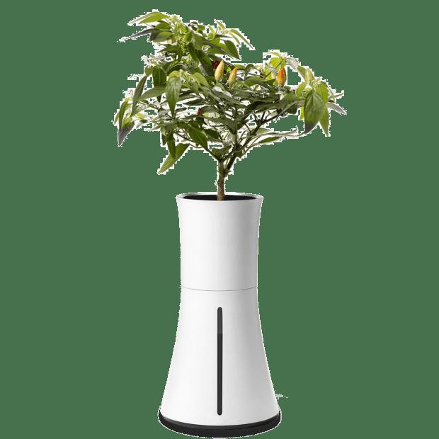 Botanium Self-Watering Hydroponic Smart Planter – White Smoke #1