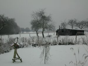 snow122000.jpg: