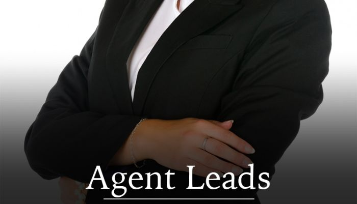 Real Estate Agent Lead