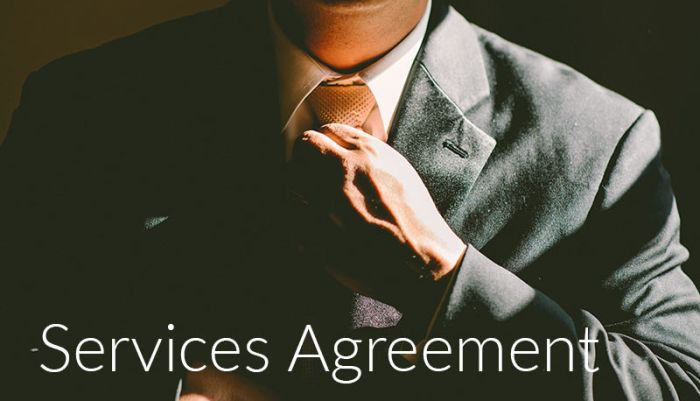 Services Agreement Application