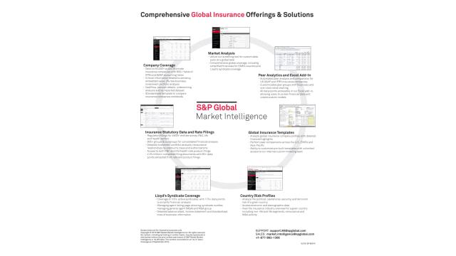 Global insurance offerings