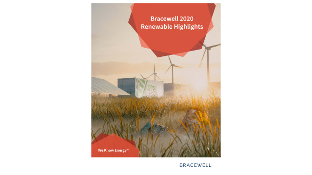2020 Renewable Highlights