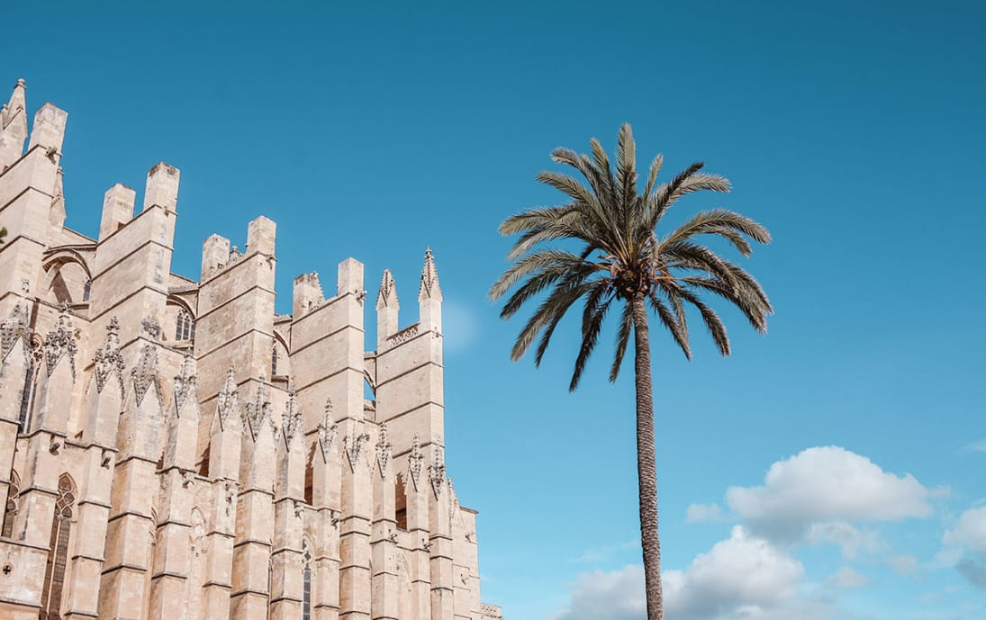 Palma cathedral by day