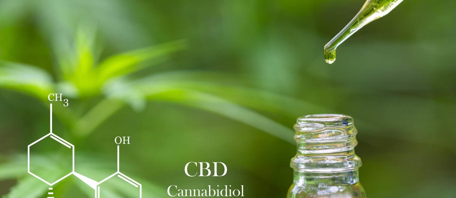 Is cannabidiol (CBD) dried flower legal in the UK?