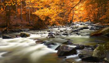 Photographing the Autumn Season