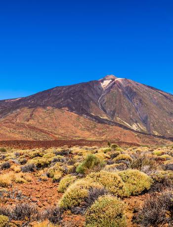 Scenic Tenerife hillside
