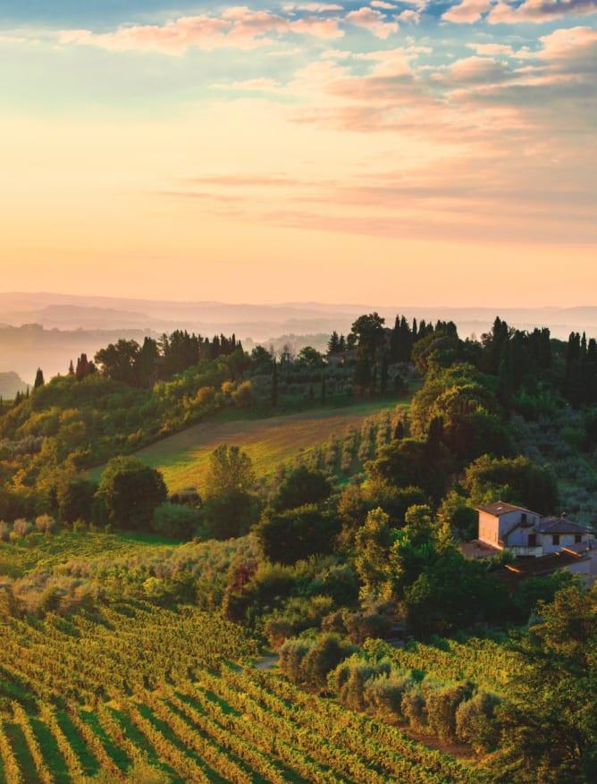 Tuscany at dawn