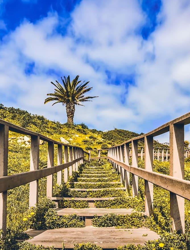 Algarve walkway