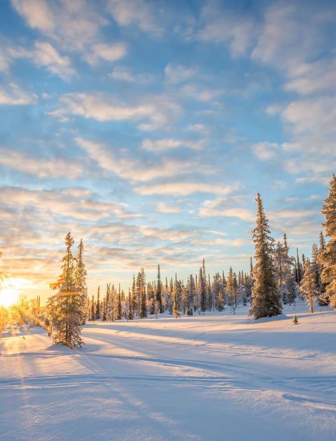 Dusk in snowy Lapland