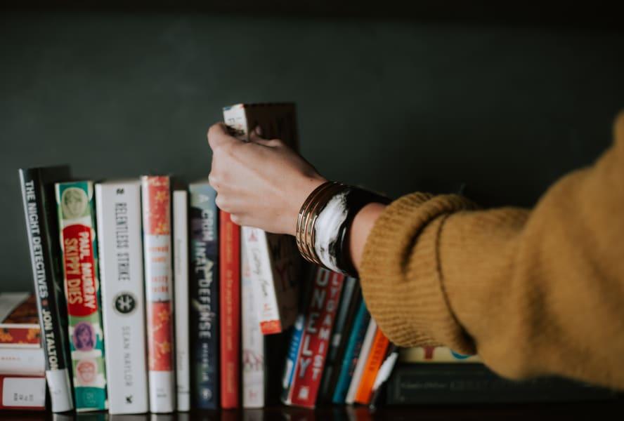 Travelling books on shelf