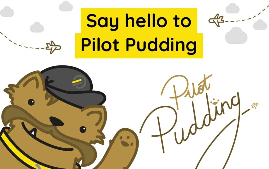Say hello to Pilot Pudding the Leeds Bradford Airport 'Yorkie'