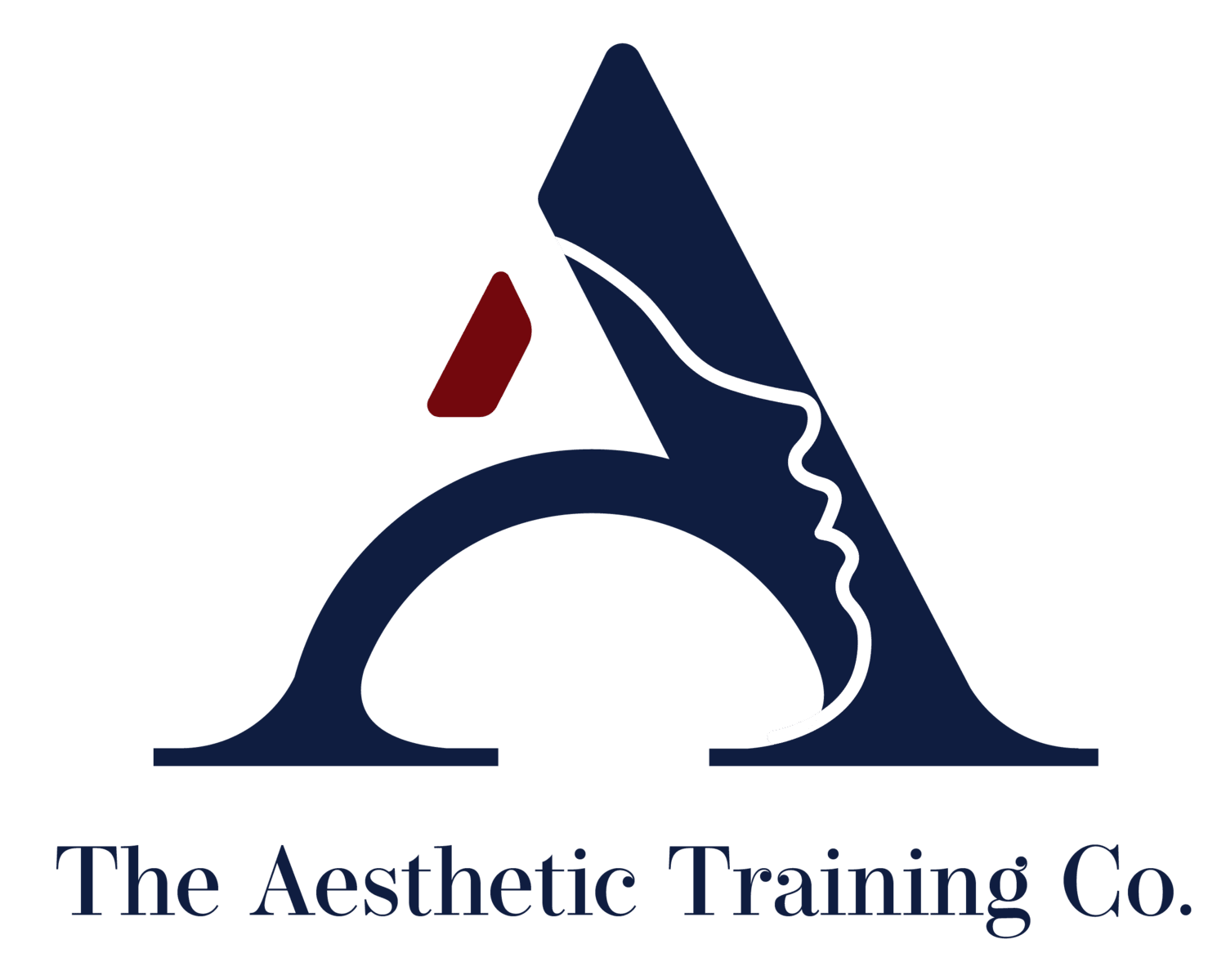 The Aesthetic Training Co