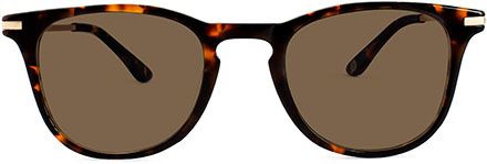 Link to product page for tortoise Rivington sunglasses