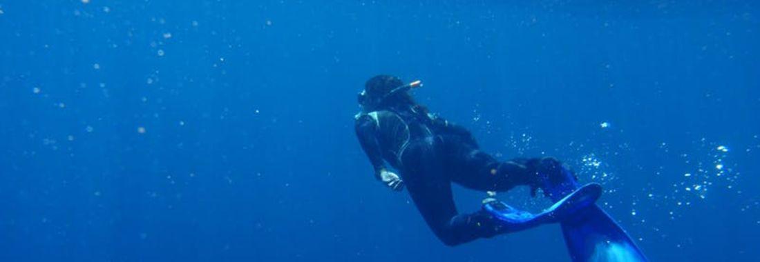 Sea Change: Global tracking of marine megafauna under anthrogenic footprint
