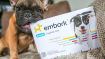Is the future of dog health in a DNA test?