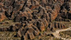 How the Bungle Bungles got their stripes