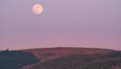 New Moon Stargazing Night Hike