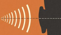 Just like bats, humans can use echolocation