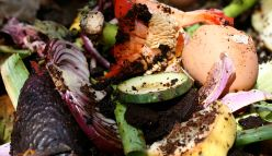 Want to tackle climate change? Tackle your food waste first