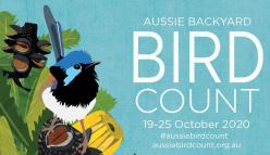 Aussie Backyard Bird Count 2020