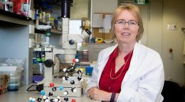WA scientists fight deadly superbugs