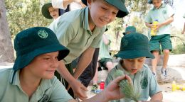 Rio Tinto Naturescape Kings Park wins big