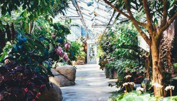 Love The Leschenault Gardening Workshop