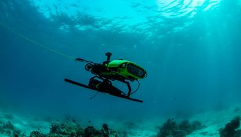 Robots to the rescue of the Great Barrier Reef