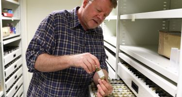 """Conservation: """"About 40% of our specimens are conservation listed and regulations are applied to protect these plants. They're named from a very small population, or a population under threat."""" ."""