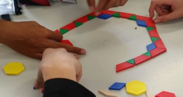 Coloured geometrical shapes, rods and fraction circles are great tools to make maths engaging .